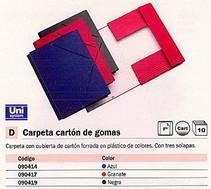 090417(1/10): Imagen de UNISYSTEM CARPETA GO