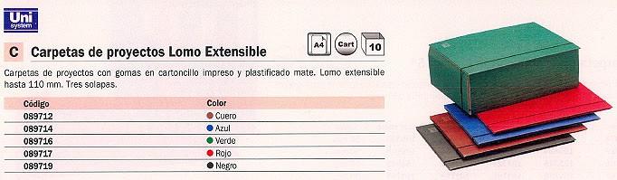 Comprar Carpetas proyecto carton 089716(1/10) de Unisystem online.
