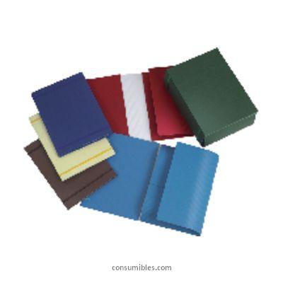 Comprar Carpetas con gomas carton 306670 de Fabrisa online.