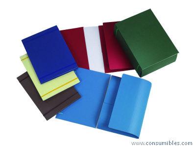 Comprar Carpetas con gomas carton 306670(1-5) de Fabrisa online.