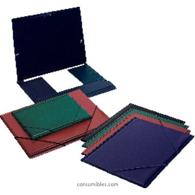 Comprar Carpetas con gomas PVC 802015(1/6) de Esselte online.