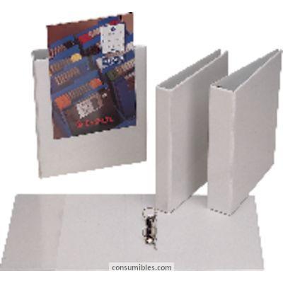 Comprar Carpetas anillas personalizables 830110(1/10) de Esselte online.
