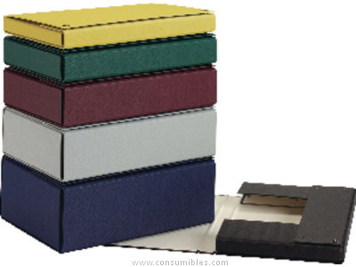 Comprar Carpetas proyecto carton 878897 de Pardo online.