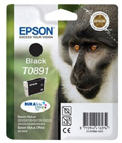 CARTUCHO DE TINTA NEGRO 58 ML EPSON T0891