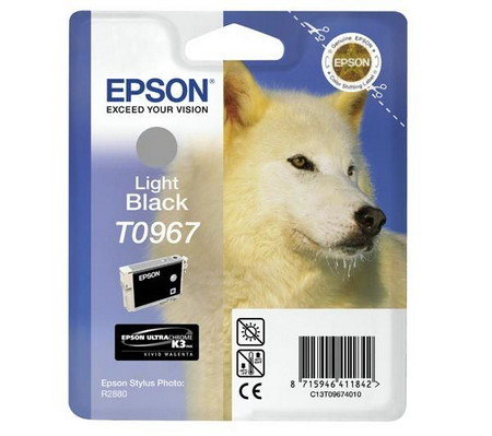 Cartucho de tinta CARTUCHO DE TINTA GRIS EPSON T0967