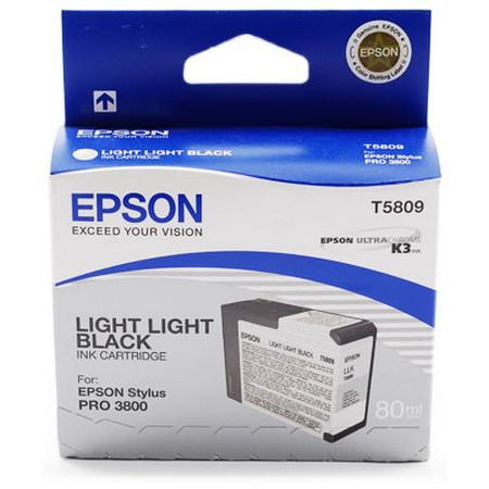 Comprar cartucho de tinta C13T580900 de Epson online.