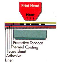 Cabezal térmico directo