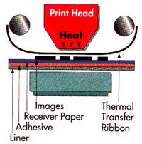 Cabezal térmico TTR